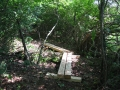 Re-route with Bridging, McDonald Preserve