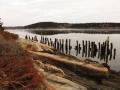 The Old Dock 2, Wilbur Preserve