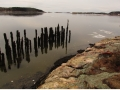 The old dock, Wilbur Preserve