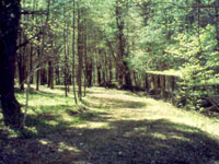 Photo of Noble Hill Preserve