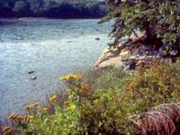Photo of Sprague Pond Preserve