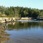 Spirt-Pond-dam